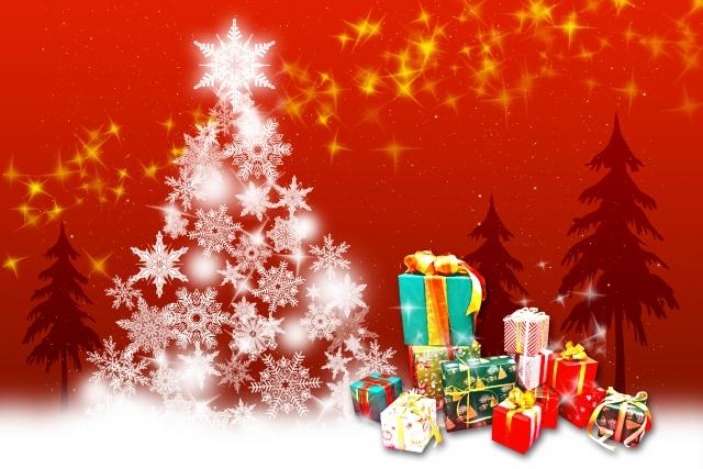 クリスマスプレゼント-妻-1