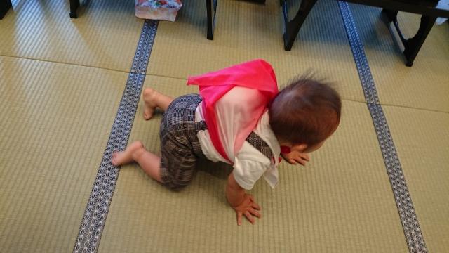 1歳の誕生日は何する-4