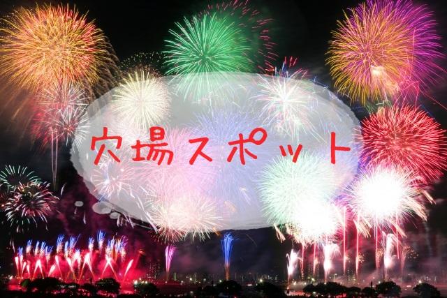 天神祭花火大会-3
