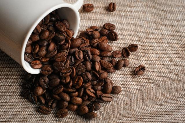 コーヒー豆の違い-1